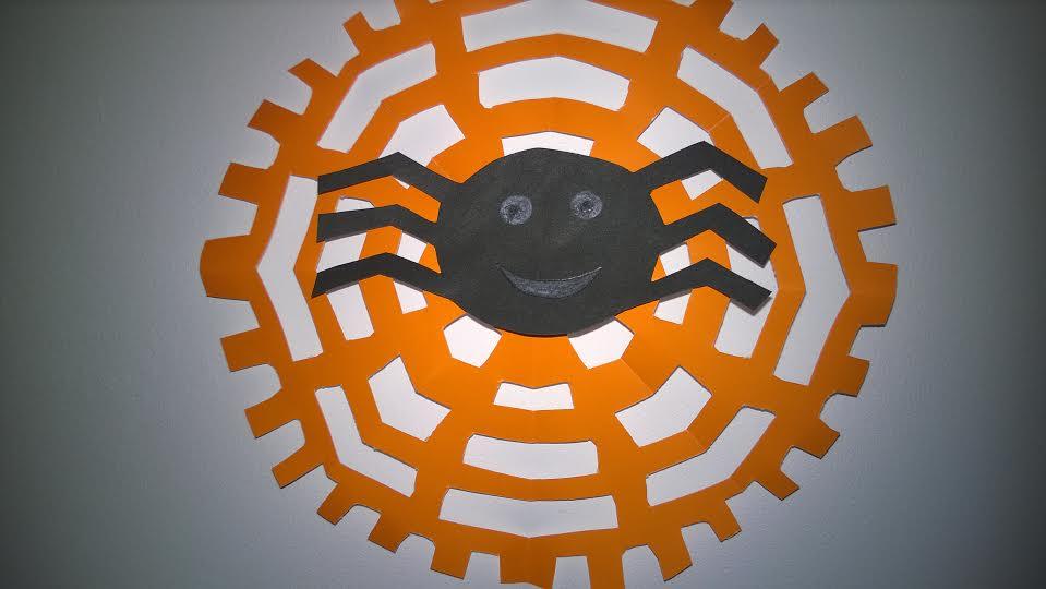 pająki14
