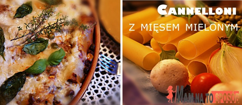 Makaron cannelloni z mięsem mielonym i beszamelem