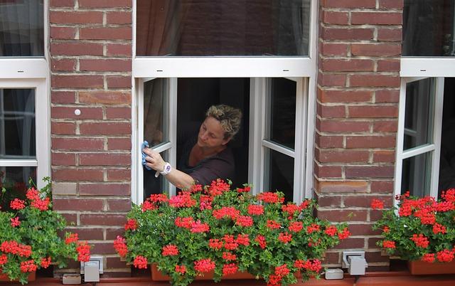 Jak umyć okna, by nie miały smug?
