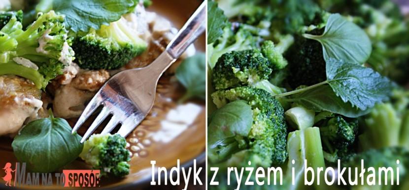Indyk z warzywami i ryżem