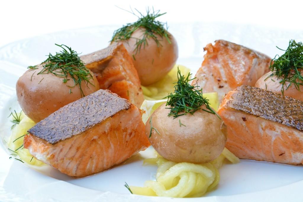 salmon-560987_1920