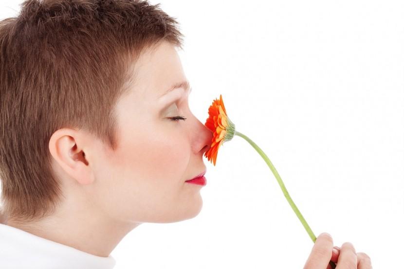 Zapachy w domu nie zawsze są przyjemne. Jak  z nimi walczyć?