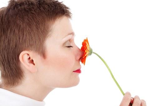 Walka z pleśnią – jak usunąć zapach stęchlizny?